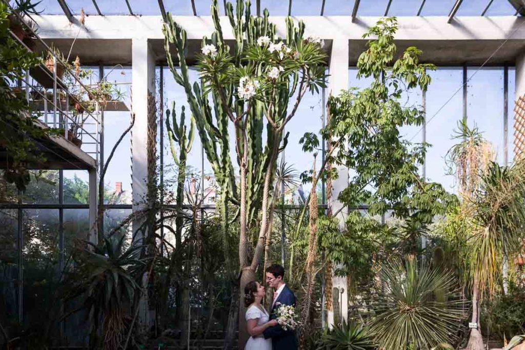 serre du jardin botanique strasbourg