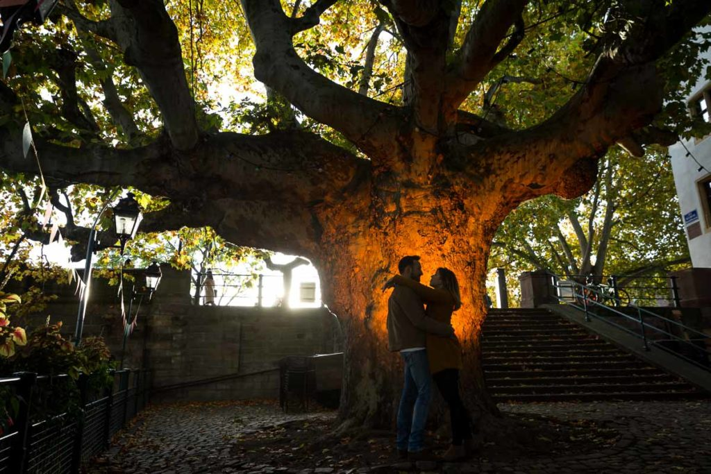 photo de couple sous le platane